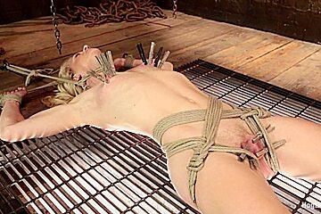 Bella Bends in First Timer Bella Bends Lives Up To Her Name - HogTied