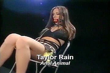 Taylor Rain DP Slave