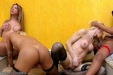 Four blonde t-girls in sexy lingerie are fucking hard
